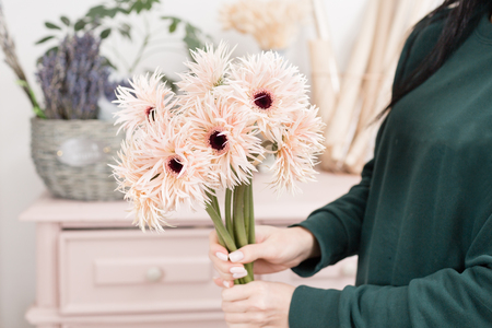 Beautiful spring flower bouquet. Delicate female hands holding a holds pale pink gerberas. Pink chest of drawers in the background. Flower shop, a family business
