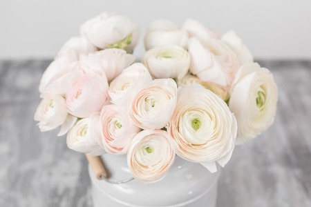 Persian buttercup. Bunch pale pink ranunculus flowers light background. Glass vase on pink vintage wooden table. Wallpaper Banque d'images