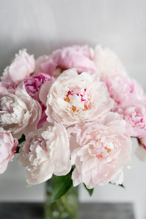 Cute and lovely peony. many layered petals. Bunch pale pink peonies flowers light gray background. Wallpaper, Vertical photo Фото со стока
