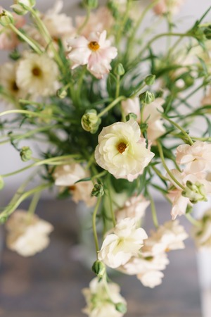beautiful buttercups Bush flowers in a vase on a table . Bouquet of light pink flower. Decoration of home. Wallpaper and background. Vertical photo