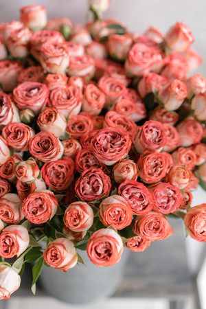 Roses of multicolor, pastel pink and powdery color. Lots of buds. Floral natural backdrop. Flower shop concept Archivio Fotografico
