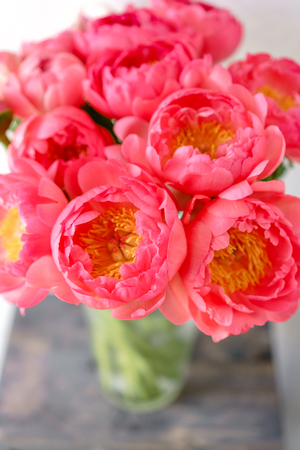 Lovely flowers in glass vase. Beautiful bouquet of peonies sort of coral charm. Floral composition, scene, daylight. Wallpaper 스톡 콘텐츠