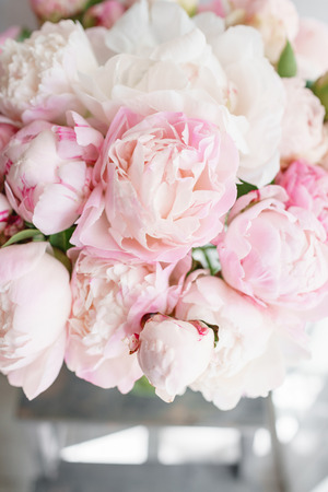Lovely flowers in glass vase. Beautiful bouquet of white and pink peonies . Floral composition, daylight. Summer wallpaper. Pastel colors