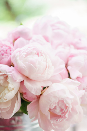 Lovely flowers in glass vase. Beautiful bouquet of pink peonies . Floral composition, scene, daylight. Wallpaper Stock Photo