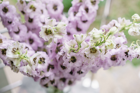 Lilac Delphiniums In Glass Vase On Gray Table Summer Wallpaper Selective Focus Flower