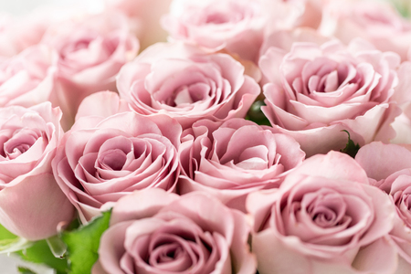 Pink roses in glass vases. Bunch pastel color. the concept of a florist in a flower shop. Wallpaper.