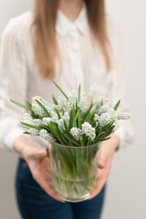 Bouquet of white muscari flowers in glass vase in woman hands. Spring bulbous flowers. Flower shop concept