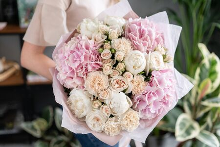 White peonies and pink hydrangea. Beautiful bouquet of mixed flowers in woman hand. Floral shop concept . Handsome fresh bouquet. Flowers delivery. Red and pink color. Stock Photo