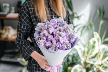 Fresh bouquet of purple Mattioli close-up. Womens or Mothers Day Theme. European floral shop. Bunch beautiful lilac flowers in woman hand.