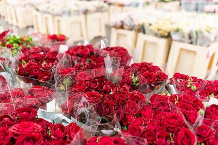 Lagerkühlschrank, Großhandel mit Blumen für Blumengeschäfte. Rote Rosen in einem Plastikbehälter oder Eimer. Online-Shop. Blumenladen und Lieferkonzept