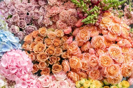 Floral carpet or Wallpaper. Background of mix of flowers. Beautiful flower for catalog or online store. Floral shop and delivery concept. Top view. Copy space Zdjęcie Seryjne