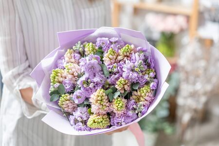 Bouquets of pink hyacinths and matthiola of lilac color in woman hand. Spring flowers from Dutch gardener. Concept of a florist in a flower shop. Wallpaper.