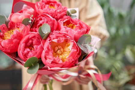 Mono bouquet of peonies, coral charm, in womans hands. Modern floral shop. Finished work of the florist. Delivery fresh cut flower from online store Фото со стока