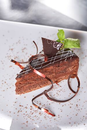 The Sacher cake, Sachertorte. Austrian chocolate cake, consisting of two plates of chocolate sponge cake and a thin layer of apricot jam 写真素材