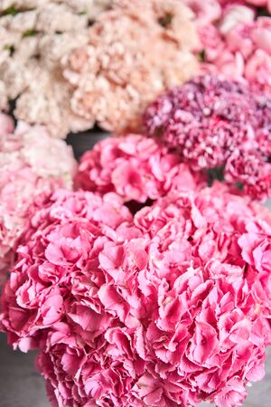 Floral carpet or Wallpaper. Background of mix of flowers. Beautiful flower for catalog or online store. Floral shop and delivery concept. Top view. Copy space Standard-Bild - 149889535