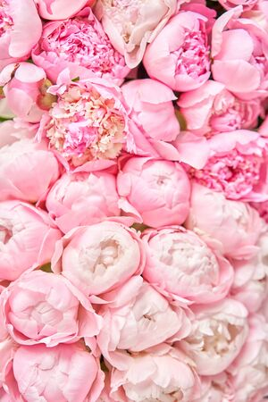 Floral carpet or Wallpaper. Beautiful Pink peony flower for catalog or online store. Floral shop concept . Beautiful fresh cut bouquet. Flowers delivery Standard-Bild - 149889338