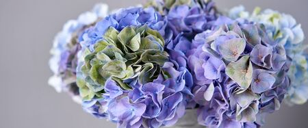 Beautiful blue hydrangea flowers in a vase on a table . Bouquet of light pink flower. Decoration of home. Wallpaper and background. Standard-Bild - 150162517