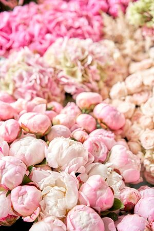 Floral carpet or Wallpaper. Background of mix of flowers. Beautiful flowers for catalog or online store. Floral shop and delivery concept. Top view. Copy space Standard-Bild - 150162522