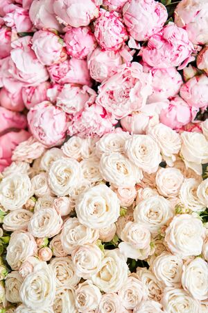 Floral carpet or Wallpaper. Background of mix of flowers. Beautiful flowers for catalog or online store. Floral shop and delivery concept. Top view. Copy space