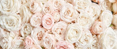 Floral carpet or Wallpaper. Background of mix of flowers. Beautiful flowers for catalog or online store. Floral shop and delivery concept. Top view. Copy space Standard-Bild - 150162524