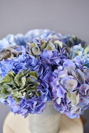 Beautiful blue hydrangea flowers in a vase on a table . Bouquet of light pink flower. Decoration of home. Wallpaper and background. Standard-Bild - 150162526