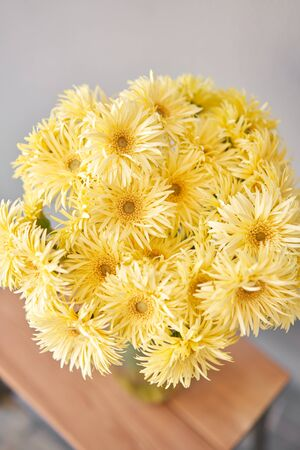 Beautiful flower composition. Sunny yellow gerbera flower heads in glass vase. Floristry concept. Spring colors Standard-Bild - 150162528