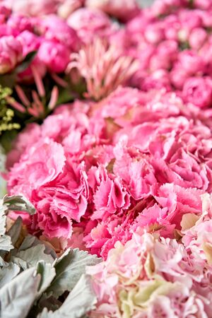 Floral carpet or Wallpaper. Background of mix of flowers. Beautiful flowers for catalog or online store. Floral shop and delivery concept. Top view. Copy space Standard-Bild - 150497039
