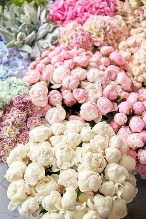 Floral carpet or Wallpaper. Background of mix of flowers. Beautiful flowers for catalog or online store. Floral shop and delivery concept. Top view. Copy space Standard-Bild - 150497044