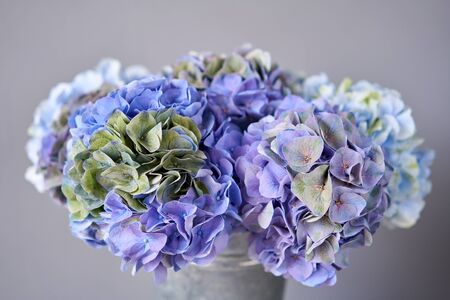 Beautiful blue hydrangea flowers in a vase on a table . Bouquet of light pink flower. Decoration of home. Wallpaper and background. Standard-Bild - 150497052