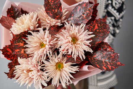 Mono bouquet of chrysanthemum in womans hands. European floral shop. the work of the florist at a flower shop. Delivery fresh cut flower.
