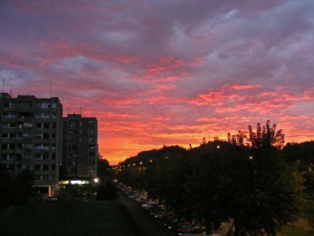 early morning sun photo