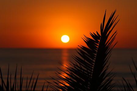 mallorca: Sunset in Mallorca