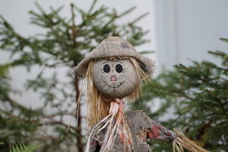 autumn scarecrow: Scarecrow Stock Photo