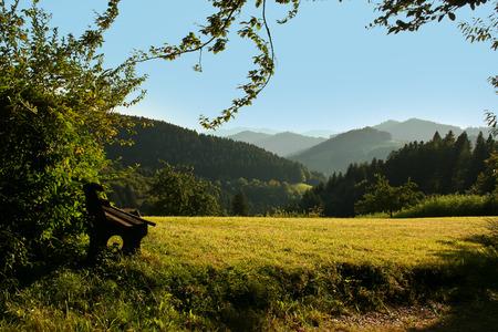 Schwarzer Wald. Schwarzer Wald. Blick über die Hügel und Wälder des Schwarzwald. Standard-Bild