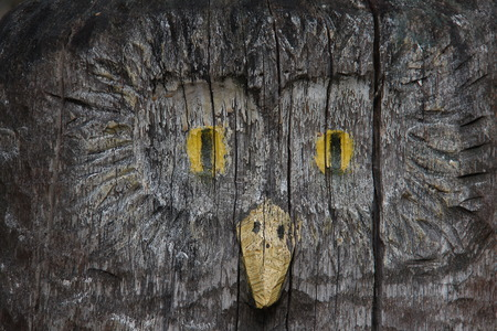 wooden figure: The wooden figure of an owl close up