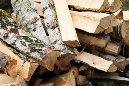 Birch firewood. Freshly chopped birch firewood prepare to dry. Stock Photo