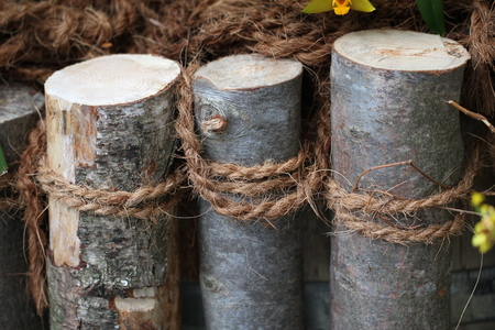 and the stakes: Wooden stakes associated with rope Stock Photo