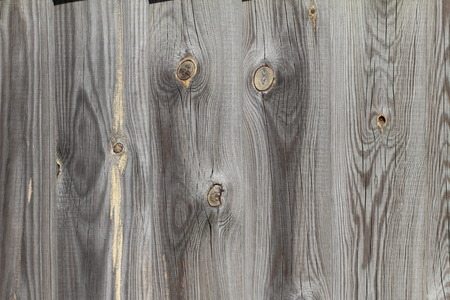 Wood. Background.