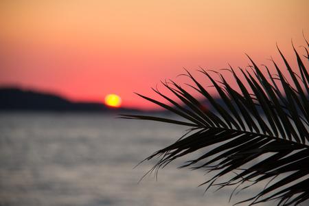 adriatic: Adriatic sunset