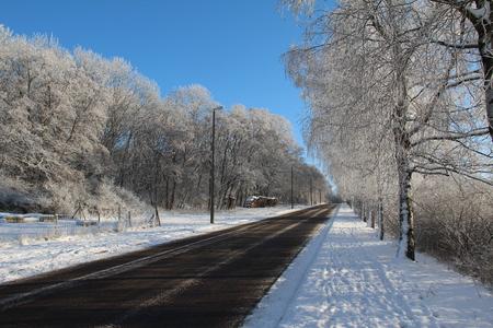 Winter landscape. Winter road.
