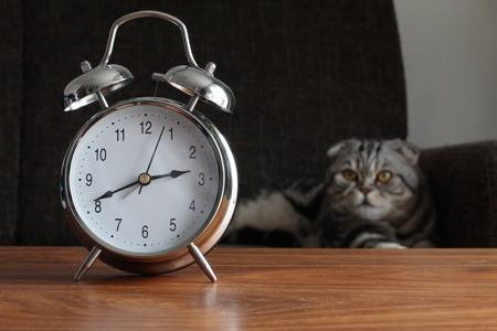 analogous: Clock