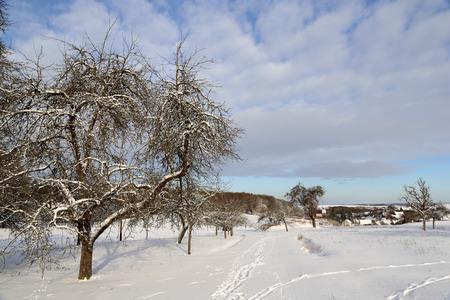 Winter Landscape with village  Sichertshausen (Germany)