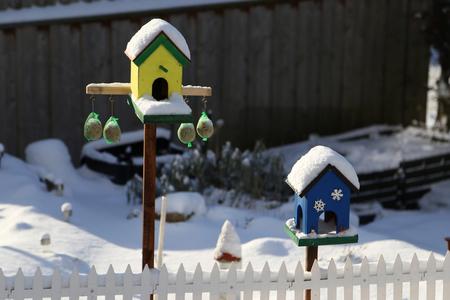 Bird box  Bird houses and feeders in the park