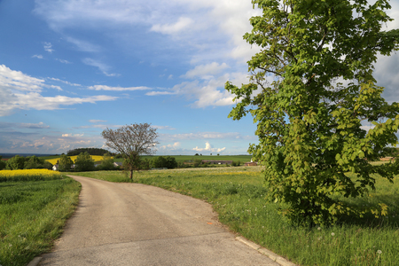 Spring landscape  landscape with a road in the foreground