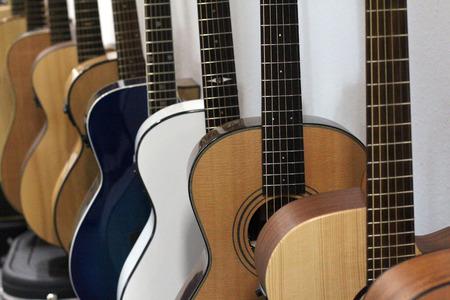 Stringed Musical Instruments  Guitars  Various Guitars Lizenzfreie Bilder