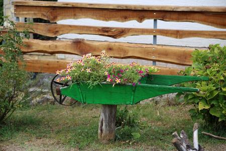 Wheelbarrow with flowers  Decor in the garden