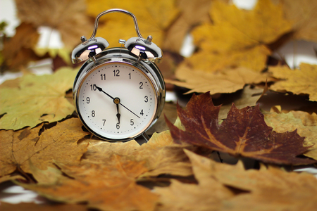 Autumn still life / alarm clock and autumn leaves Standard-Bild - 111689798