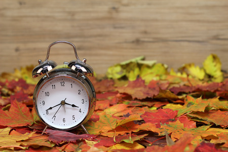 Autumn still life / alarm clock and autumn leaves Standard-Bild - 111689800