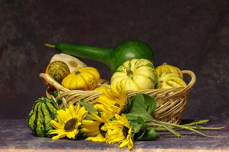 Herbst Stillleben / Verschiedene dekorative Kürbisse auf dem Tisch Standard-Bild - 86863146