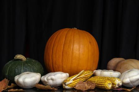 Herbst Stillleben  Verschiedene dekorative Kürbisse auf dem Tisch